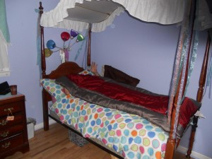 Greg's Comfy Bed - Cute huh?  (Molly was an angel and sacrificed her bed so he could be comfortable.)